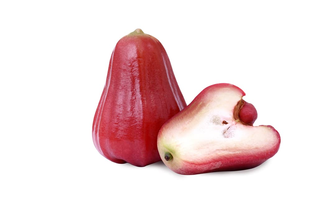 Rose Apple Picture