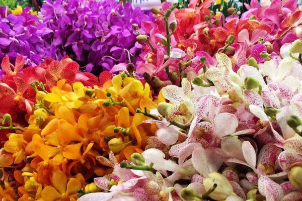 A Night at Bangkok Flower Market